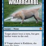 WHARGARBLETheMagicCard