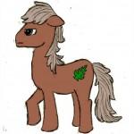 DoronG-Pony